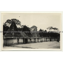 Congo-Belge: Tribal Huts Near Buta (Vintage Photo B/W 1929)