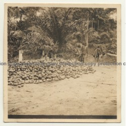 Congo-Belge: Indigenous Kids In Front Of Pile Of Cocoa Pods / Cacao (Vintage Photo ~1930s)