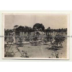 Congo-Belge: Farm In Elisabethville *1 / Lubumbashi (Vintage Photo ~1930s)