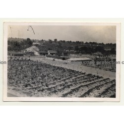 Congo-Belge: Farm In Elisabethville *6 / Overview (Vintage Photo ~1930s)