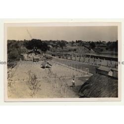 Congo-Belge: Farm In Elisabethville *8 / Overview (Vintage Photo ~1930s)