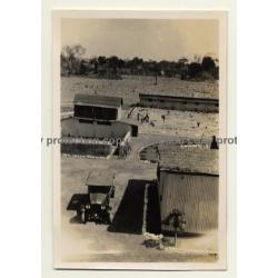 Congo-Belge: Farm In Elisabethville *9 / Overview (Vintage Photo ~1930s)