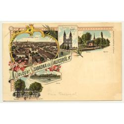 Subotica / Serbia: Üdvözlet Szabadka ès Palicsról (Vintage Postcard ~1900/1910 Litho)