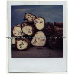 Photo Art: Wooden Logs II (Vintage Polaroid SX-70 1980s)