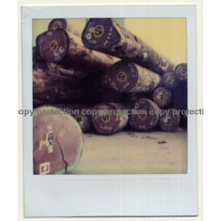 Photo Art: Wood Logs IV (Vintage Polaroid SX-70 1980s)