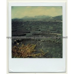 Photo Art: Rock Circles (Vintage Polaroid SX-70 1980s)