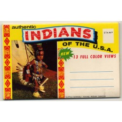 Authentic Indians Of The USA (1950s Postcard Booklet 11 Views)