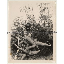 Congo: Happy Indigenous Farmer With Huge Maniok Roots (Vintage Photo ~1950s/1960s)