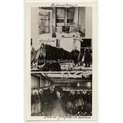 Alesund / Norway: Fur Farm - Fox Furs - Laboratory (Vintage Photo Collage ~ 1930s/1940s)