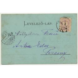 Udvozlet Ersekujvarbol / Slovakia: Kossuth Lajos Place - Moonlight (Vintage PC ~1900)