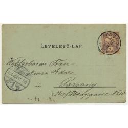 Tarcsáról / Hungary: Gyógyudvar - Spa Center (Vintage Postcard 1901)