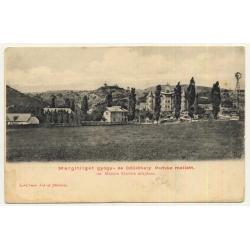 Margitliget / Hungary : View Over Resort (Vintage Postcard ~1910s)