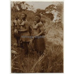 Congo-Belge: Group Of Native Females In Steppe *2 / Bast Skirt...