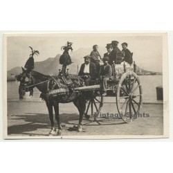 Italy: Carro Siciliano / Donkey - Mule (Vintage RPPC...