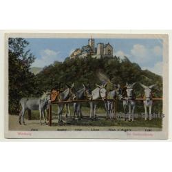 Wartburg / Thüringen: Am Eselstandplatz (Vintage Postcard)