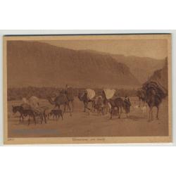 Lehnert & Landrock: Caravanne En Route / Camels & Donkeys *240
