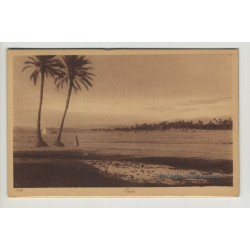 Lehnert & Landrock: Oasis With Palm Trees *178