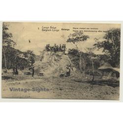 Katanga / Congo Belge: Natives Level Termites Mount (Vintage...