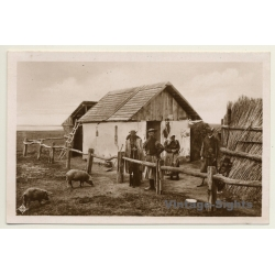 Hungary: In The Puszta / A Herdmen's House - Pigs (Vintage RPPC)