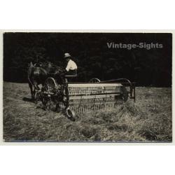 Horse Harvester / Pferde Mähdrescher (Vintage RPPC Leonar)