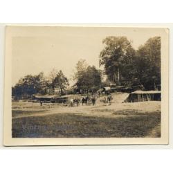 La Harazée / Argonne: Camp, Soldats & Mules WW1 (Vintage Photo...