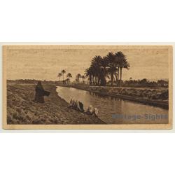 Lehnert & Landrock: Egypt No. 25 Landscape Near Cairo (Vintage...