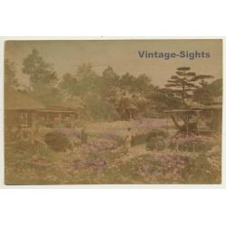 Japan: Geisha In Traditional Garden - Minka / Meiji Period...