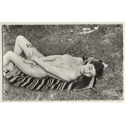 Shorthaired Nude Woman Relaxes On Picnic Blanket / Pin-Up...