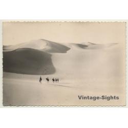 Bedouins Cross Sahara - Dromedaries - Dunes (Vintage RPPC Ethnic)
