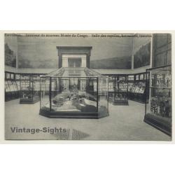 Musée Du Congo / Tervueren: Salle Des Reptiles, Batraciens,...