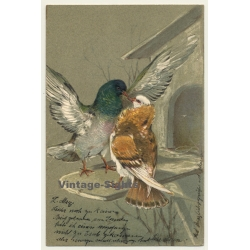 Pigeon & Bird / Paul Finkenrath (Vintage Embossed PC 1900s)