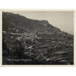 Banyalbufar / Mallorca: Stone Terraces - Vineyards - UNESCO...