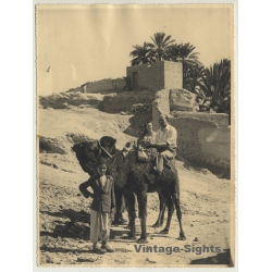 Bou-Saada / Algeria: Tourists On Dromedary / Desert (Vintage...