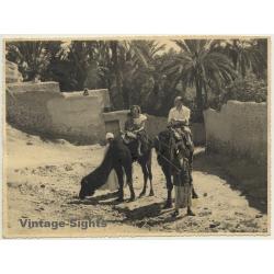 Bou-Saada / Algeria: Tourists On Dromedaries / Native Kid...