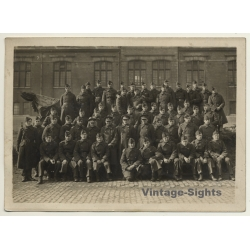 Large Group Of Belgian Soldiers / Uniforms (Vintage Photo...