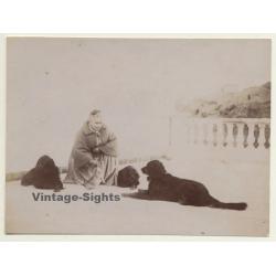 Elder Woman & Her 3 Dogs / Gordon Setter? (Vintage Albumen...