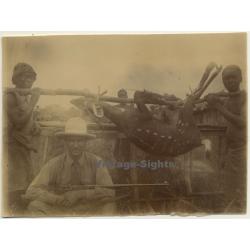 Congo-Belge: Colonial Hunter - Rifle - Indigenous & Antilope...