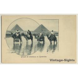 Egypt: Groupe De Chameaux Et Pyramides / Camel (Vintage PC...