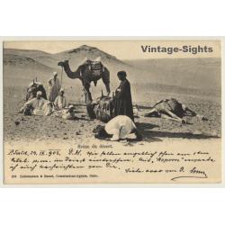 Egypt: Scène Du Désert / Camels & Nomads (Vintage PC 1903)