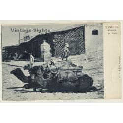 Tanger / Morocco: Camels At Soco / Berber & Nomads (Vintage PC...