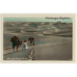 Lehnert & Landrock 188: Passage Through The Desert / Camels...