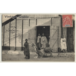 Dakar / Senegal: Boutique Indigéne Et Chamelier Maure / Camel...