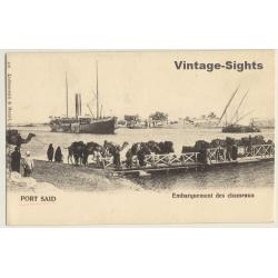 Port Said / Egypt: Embarquement Des Chameaux / Camels On Ferry...