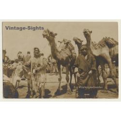 Maghreb: Wüstengeschwader / Méhariste - Camel - Ethnic...