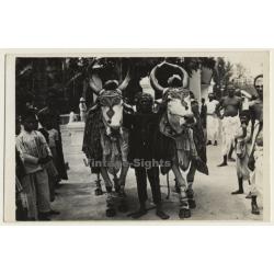India: Gopastami Festival - Decorated Cows / Ethnic (Vintage...