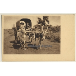 India: Mission Sister On Travel / Cow Cart (Vintage PC)