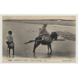 Bedouin On His Donkey Crosses Wadi (Vintage Photo PC B/W)