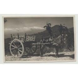 Taormina - Sicily: Donkey With Cart (Vintage Photo PC B/W)