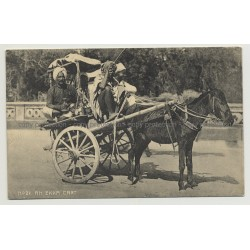 An Ekka Cart - Donkey Cart / Benares - India (Vintage Photo PC B/W)