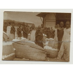 Group Of African People At Cotton Wool Market / Congo? (Vintage Photo B/W 1920s/1930s)